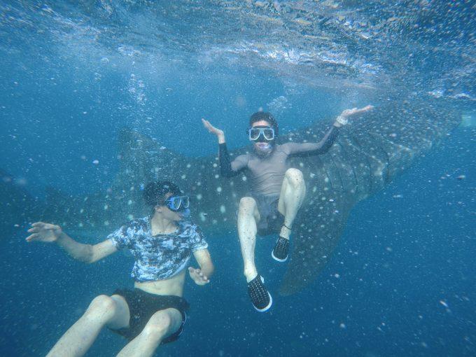 ジンベエザメと写真を撮る男性2名