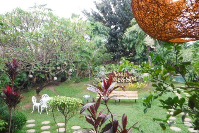 プルメリアの庭園