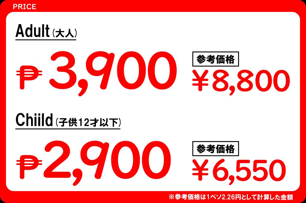 リトルエルニドツアーの価格2019年