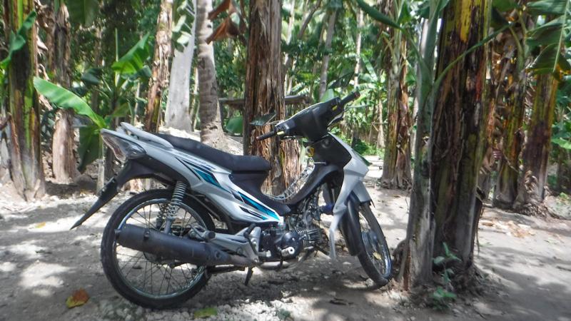 バイクで山道