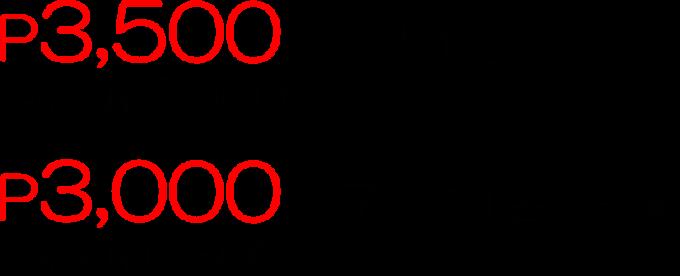 カカオ農園ツアーの価格の画像