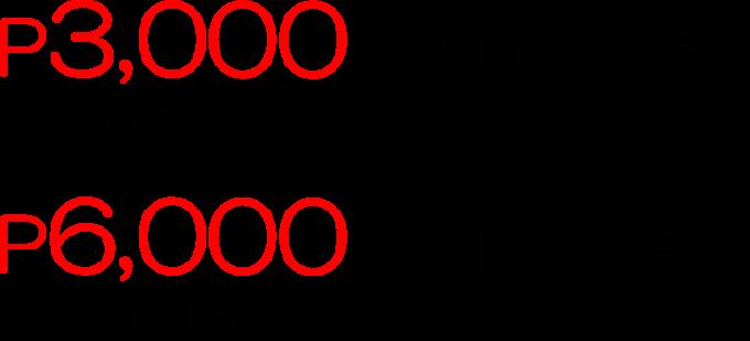 レンタルガイドの価格の画像