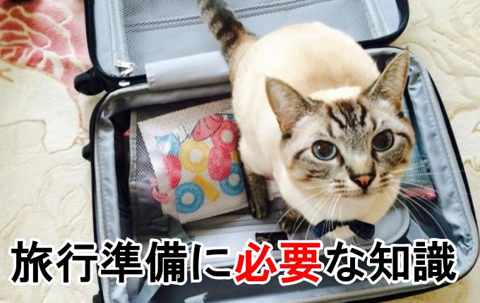 旅行準備に必要な知識のイメージ画像