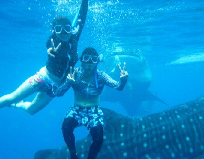 ジンベエザメと記念写真を撮っているイメージができる写真