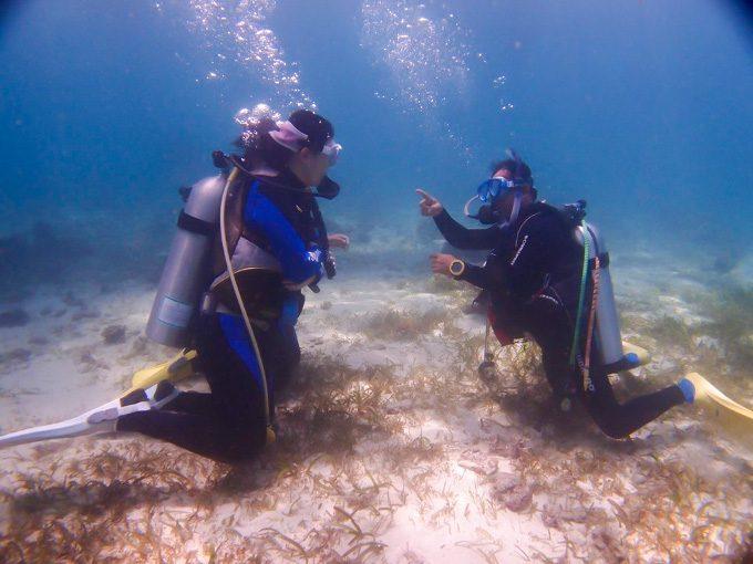 海洋実習の写真