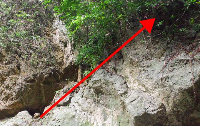 ダイナミックツアーの崖の写真