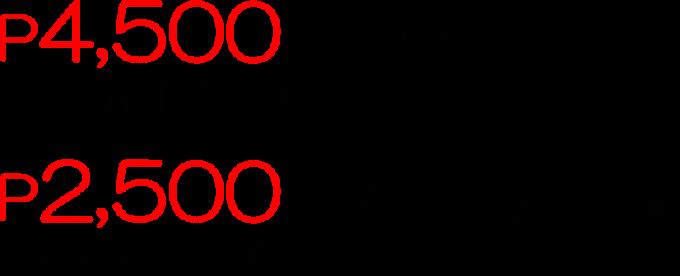 セレブ・アイランドホッピングの価格の画像