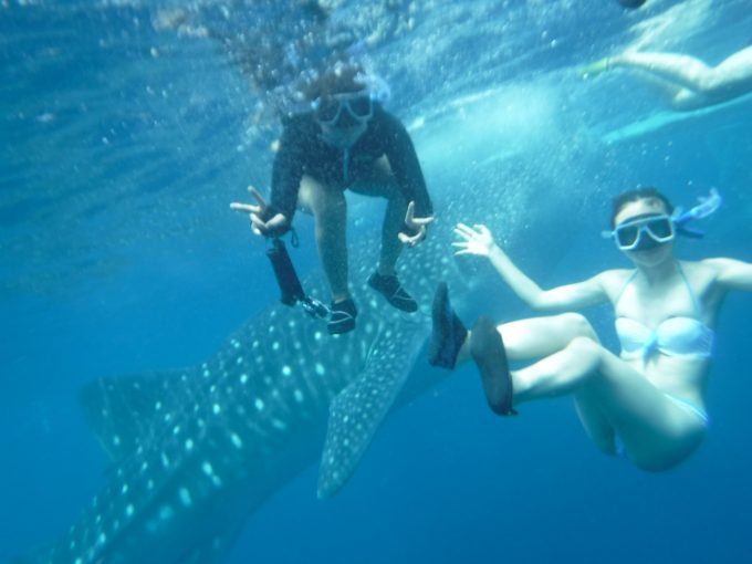 お客さま2人とジンベエザメの写真
