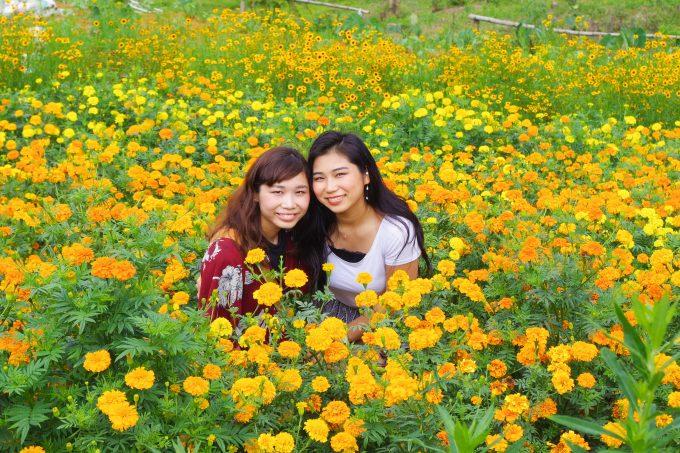 黄色い花に囲まれた女性2名