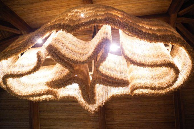 ザ・コーヴの貝のシャンデリアの写真