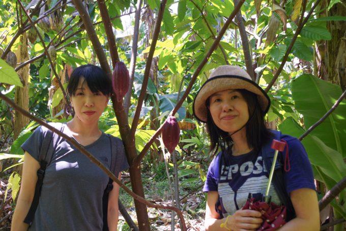カカオ農園にいる女性2人
