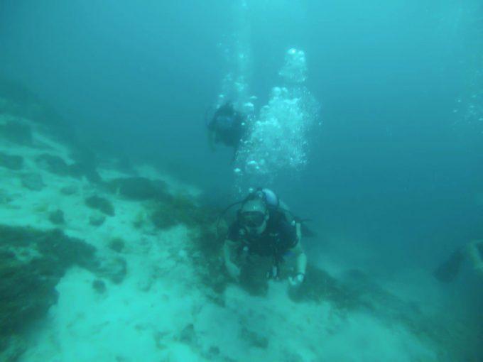 スキューバダイビングで潜っている男性2名