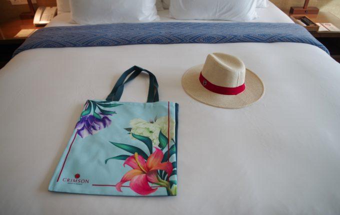 クリムゾンボラカイがプレゼントしている帽子とバッグ
