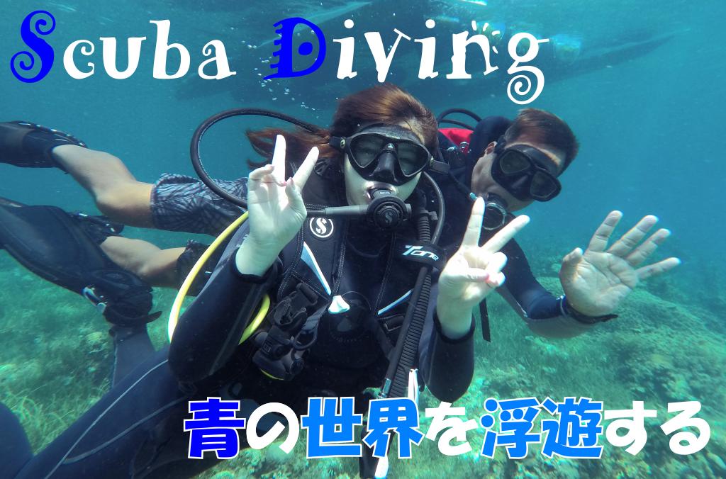 体験ダイビングのトップ画像2019年