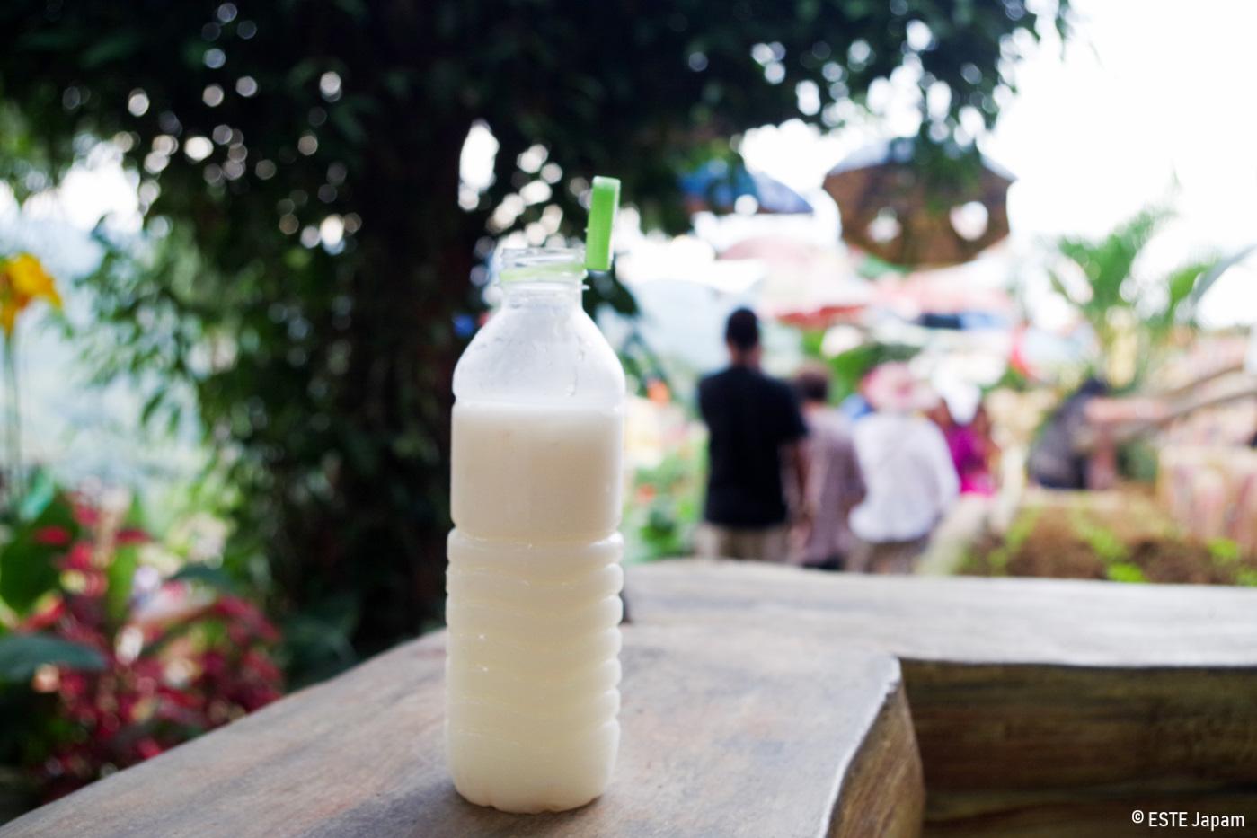 シラオPGCSで売っているココナッツミルク